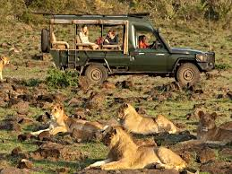 african safari car rothschild safaris in africa with kids