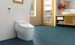 Bidets For Toilets Uspa Remote Control Bidet Bio Bidet