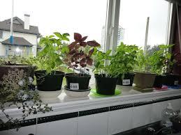 portable herb garden window garden hydroponic home outdoor decoration