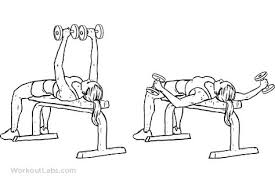 Flat Bench Db Fly Flat Bench Dumbbell Fly Spor Pinterest Bench Exercises And