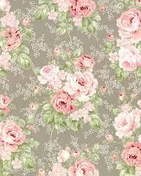 soft english rose wallpaper wallpaper pinterest rose