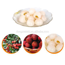 lychee fruit canned lychee fruit canned lychee fruit suppliers and