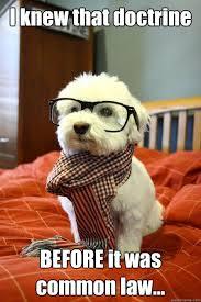 Law Dog Meme - hipster dog memes quickmeme