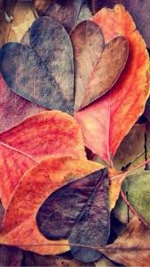 cute baby boy autumn leaves wallpapers best 25 fall backgrounds ideas on pinterest fall