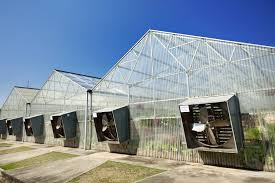 ventilation fans for greenhouses greenhouse air circulation and ventilation next generation farming