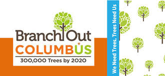 branch out banner new jpg