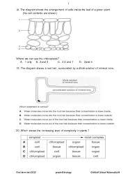 grade 8 biology practice test