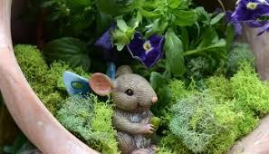 make a whimsical fairy garden kit gluesticks