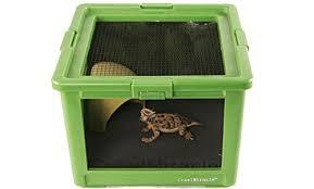 top 5 reptile and amphibian terrariums pet convenience
