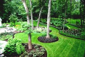 landscaping ideas cheap for large backyards cool backyard budget