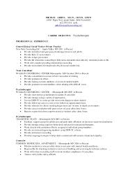 Technical Writing Resume Examples by Washburn Center Based Therapist Resume