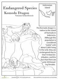 endangered species komodo dragon komodo dragon endangered