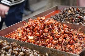 ikea u0027s annual crayfish buffet is back celebrate summer