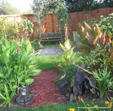 2010 garden reflection