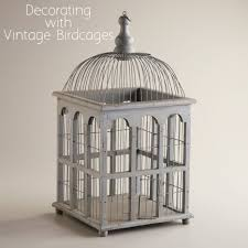Home Interior Bird Cage Decor Decorative Bird Cages Cage Home Cheap Large Nz In Bul
