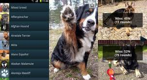 featured top 10 android apps for dog lovers androidheadlines com