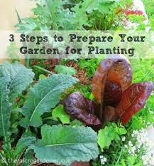 3 steps to prepare your garden for planting the micro gardener