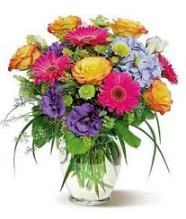 elkton florist flowers by shirley a st augustine florist for 40 years