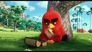 angry birds gifs u0026 share giphy
