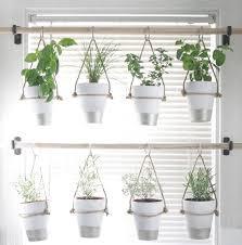 Indoor Kitchen Garden Ideas The Best Indoor Herb Garden Ideas For Your Home And Apartment No