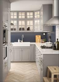 Ikea Kitchen Cabinet Handles by Kitchen Ikea Pantry Cabinet Ikea Refrigerator Cabinet Ikea