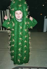 18 best halloween 2015 images on pinterest cactus costume