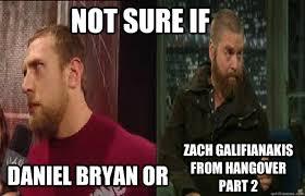Bryan Meme - daniel bryan meme sure if daniel bryan or zach galifianakis