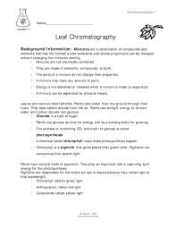 chromatography worksheet worksheets