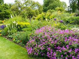Botanical Gardens Oxford Oxford Botanic Gardens