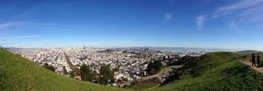 san francisco native plants the best hikes in san francisco and the bay area