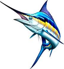 blue marlin 18