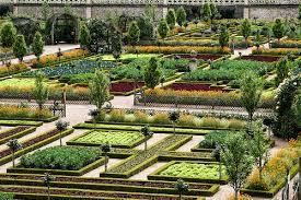 nice vegetable gardens nice things