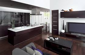 Kitchen And Living Room Designs Kitchen And Living Room Combined Designs With Glass Windows