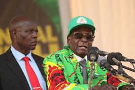 Blind Side Family Name Mugabe Grace Blindside Mnangagwa At Rally Iol News