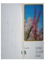 Salep Rako 144354214 cedomil silic sumske zeljaste biljke