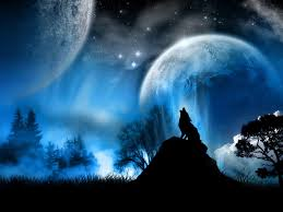 moon and wolf 1600 x 1200 photography miriadna com