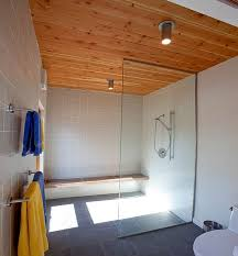 bathroom wood ceiling ideas eco friendly ceiling designs for the modern home
