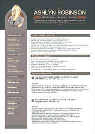 modern resume format this is modern professional resume articlesites info