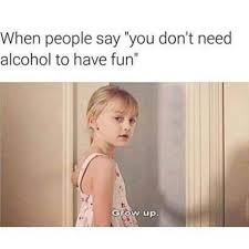 Memes Alcohol - do you need alcohol to have fun meme by peebee memedroid