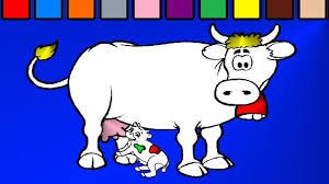 mother and baby cow coloring page youtube