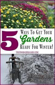 11180 best winter gardening images on pinterest gardening