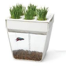 Ebay Vertical Garden - herb garden ebay