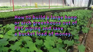 Greenhouse Plans Homemade Greenhouse Detailed Step By Step Greenhouse Plans How