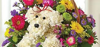 dog flower arrangement how about some dog shaped flowers for s day