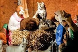 strange manger the world s weirdest nativity urbanist