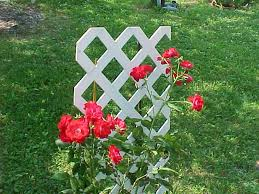 Pvc Pipe Trellis Garden And Lawn Trellis