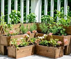 Herb Container Garden - diy herb gardens for every space