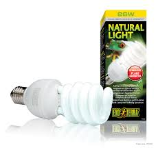 fluorescent light natural sunlight exo terra natural light full spectrum daylight bulb