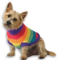 pet sweaters rainbow sweater knitting pattern from caron yarn favecrafts com