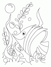 fish coloring pages kids coloring